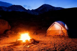 Camping Insurance Agent